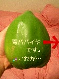 image/sakuragumi-2006-04-26T16:39:56-1.jpg