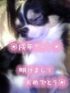 image/sakuragumi-2006-01-01T01:21:41-1.data