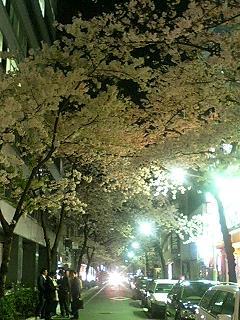 image/sakuragumi-2006-03-30T22:33:20-1.jpg